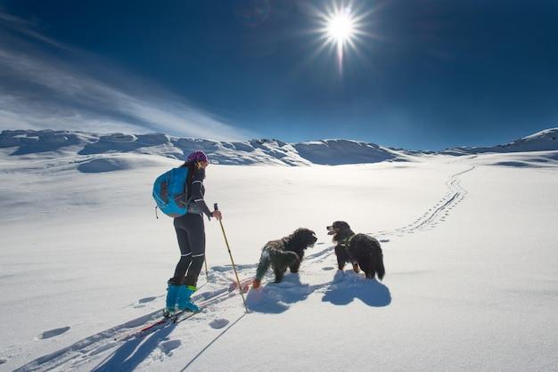 Einsames mädchen in den bergen mit dem skireisen und zwei hunden
