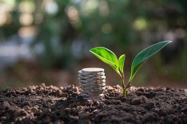 Einsparungsgeldkonzept mit dem geldmünzenstapel, der für geschäft wächst.