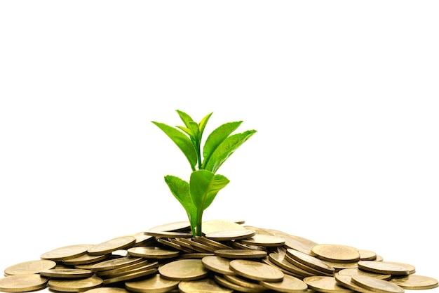 Einsparungsgeldkonzept mit dem geldmünzestapel lokalisiert auf weißem hintergrund.