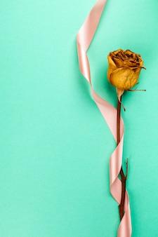 Einzelne getrocknete rose