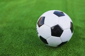 Einzelner Fußball auf grünem Rasen