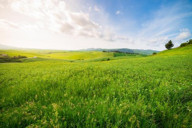 Einzigartige grüne landschaft und kultivierte hügelkette in der toskana, italien