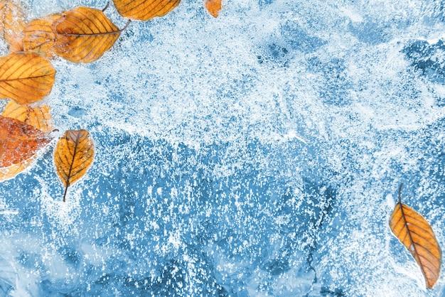 Eis mit gefrorenen trockenen blättern für den hintergrund