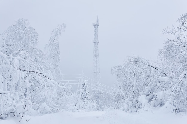 Eisbedeckter mobilfunkmast und elektrische leitungen inmitten eines verschneiten waldes auf einem berg gegen einen winterhimmel