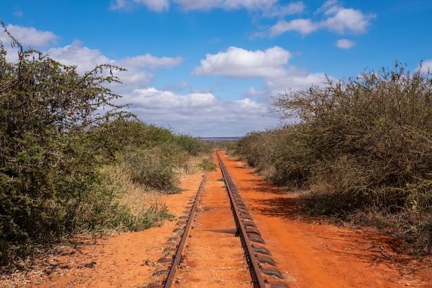 Eisenbahn, die durch die bäume unter dem schönen blauen himmel in tsavo west, taita hügel, kenia geht