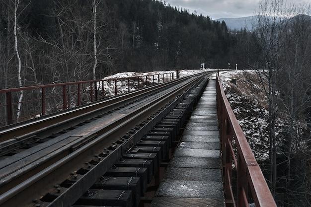 Eisenbahnbrücke zwischen schneebedeckten bergen. reisen. transport.