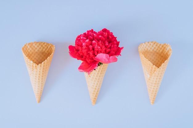 Eistüten mit rosa pfingstrose auf blauer, flacher lage, minimalismus