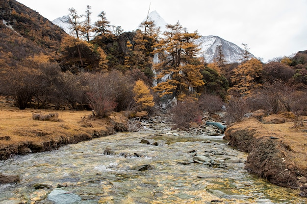 Eiswasserfall in yading-naturreservat, china