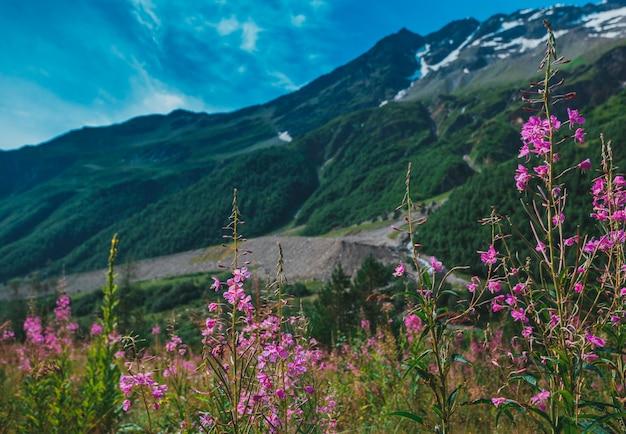 Elbrus, berge im sommer. großer kaukasus vom elbrus