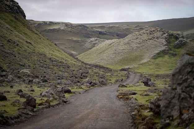 Eldgja canyon mit moos bedeckt im isländischen hochland