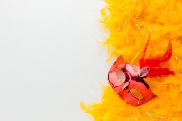 Elegante karnevalsmaske und federn