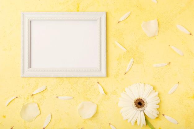 Elegante weiße blume und blumenblätter mit horizontalem kopienraumrahmen