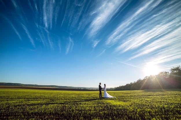 Eleganter bräutigam und schicke brünette braut auf einem hintergrund der natur und des blauen himmels. blick aus der ferne