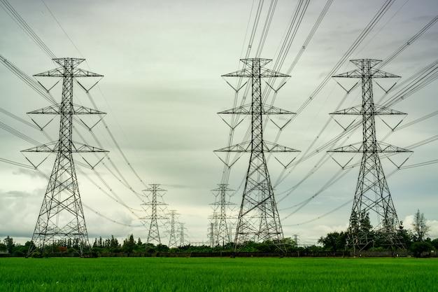 Elektrischer hochspannungsmast und elektrischer draht am grünen reisfeld und am baumwald