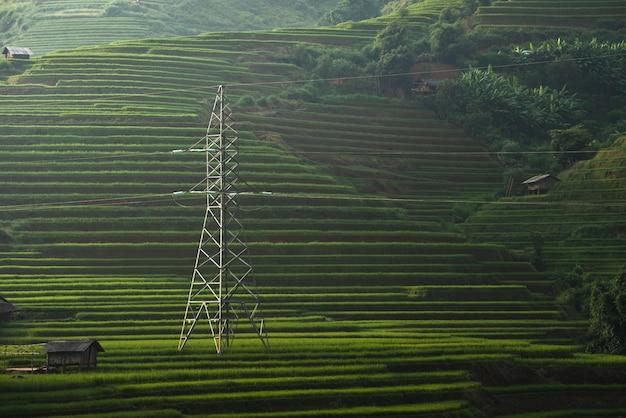 Elektrischer pfosten mit landschaftsreisfeldern auf terassenförmig angelegtem von mu cang chai, yenbai, vietnam