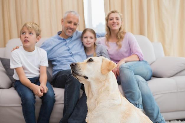 Eltern und ihre kinder auf sofa mit welpen