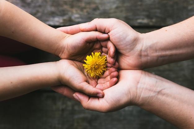 Eltern- und kinderhände, die blumen übergeben