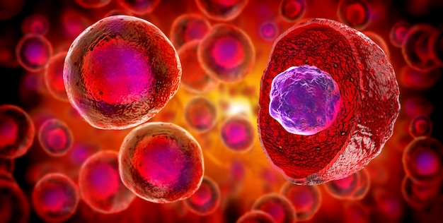 Embryonale stammzellen, zelltherapie, regeneration, krankheitsbehandlung