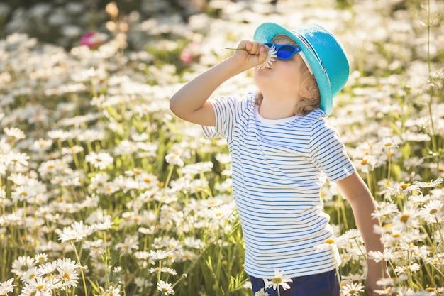Emotionales kind im kamillenfeld. fröhliches kind mit blumen, die hut und sonnenbrille tragen. glücklicher junge in der sommerzeit schnüffelt die blumen