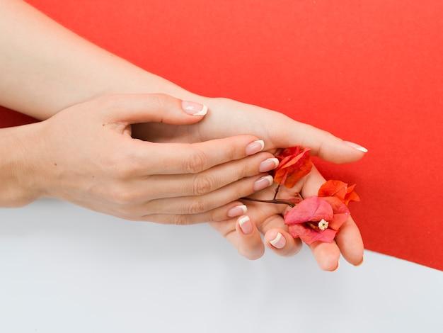Empfindliche hände, die rote blumen halten
