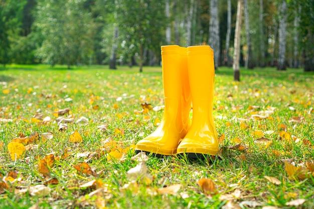 Ende des sommerkonzepts. gelbe gummistiefel, die auf dem rasen mit den gefallenen herbstblättern stehen. herbstlandschaftsgestaltung und landwirtschaftlicher hintergrund.