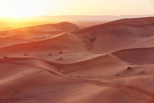 Endloser sand der sahara, die heiße sengende sonne scheint auf die sanddünen. marokko merzouga