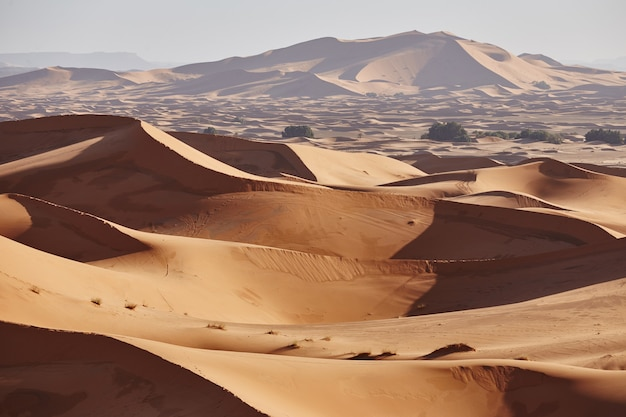 Endloser sand der sahara. schöner sonnenuntergang über sanddünen von sahara desert marokko afrika Premium Fotos