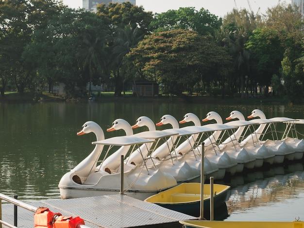 Entenboot im stadtgarten