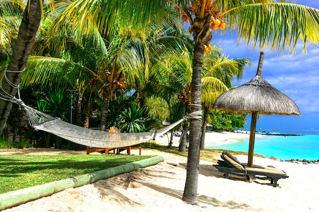 Entspannende tropische ferien. landschaft mit hängematte unter palme