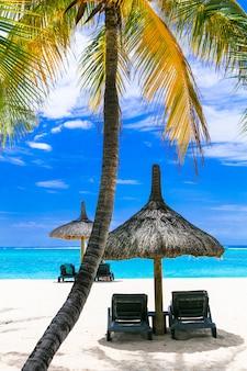 Entspannende tropische ferien mit liegestühlen über weißem sandstrand