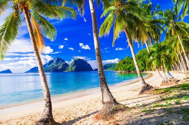 Entspannende tropische landschaft mit wunderschönem palmenstrand