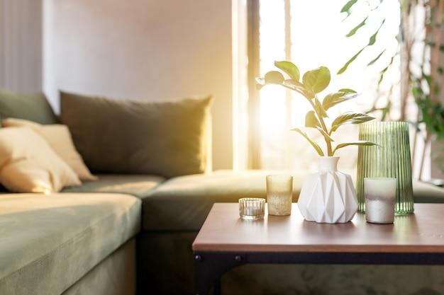 Entspannende zeit in einer komfortablen grünen lofthausvase mit zamioculcas