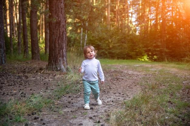 Entzückende kleinkindspaziergänge im wald sonnigen sommertag