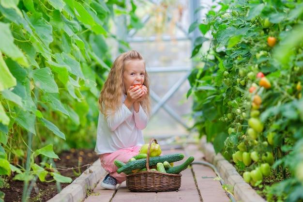 Entzückendes kleines mädchen, das im gewächshaus erntet. porträt des kindes mit der großen tomate in den händen