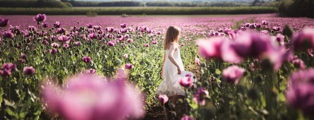 Entzückendes kleines mädchen mit dem langen haar im weißen kleid einsam gehend auf dem lila mohnblumen-blumengebiet