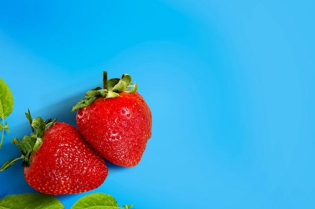 Erdbeere in leuchtenden farben