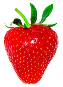Erdbeere isoliert auf weißem hintergrund. beschneidungspfad.