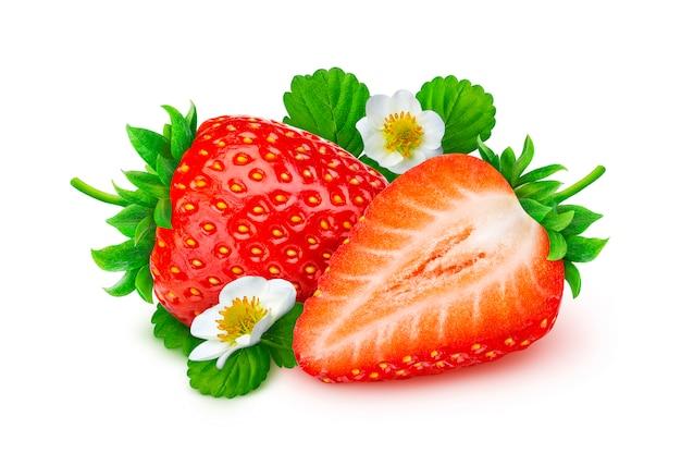 Erdbeere isoliert. zwei erdbeeren mit blumen und blättern getrennt auf weißem hintergrund