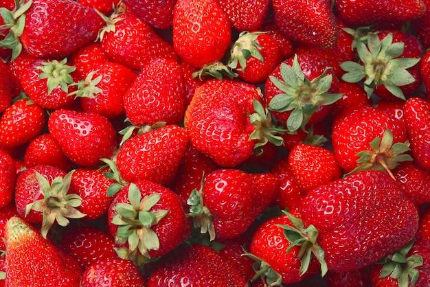 Erdbeere. makro mit frischen beeren. fruchthintergrund. draufsicht.
