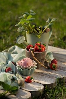 Erdbeereisbällchen mit frischen erdbeeren in schönen eisschalen. vintage gartenwerkzeug