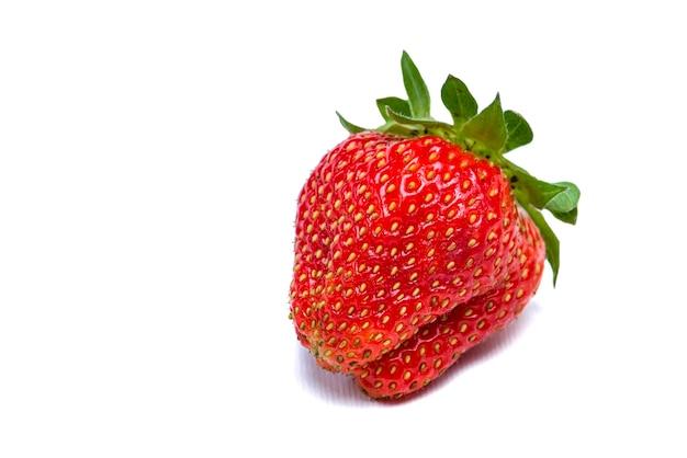 Erdbeeren auf weißem hintergrund erdbeerisolat auf weißem hintergrund foto zum ausdrucken oder in...