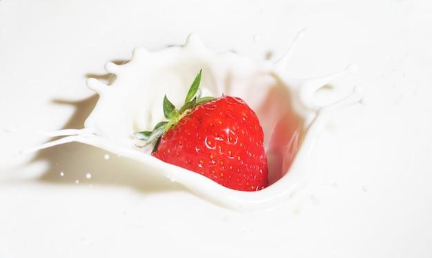 Erdbeeren fallen in milch mit spritzern