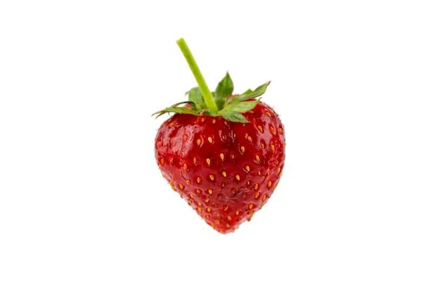 Erdbeerfrisches rot, im winter essen