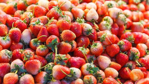 Erdbeerfrucht (gartenerdbeeren) mit ihrem aroma, ihrer leuchtend roten farbe, ihrer saftigen textur und ihrer süße