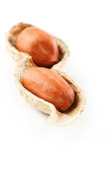 Erdnüsse auf einem abgezogenen pfeiler, zwei körner lokalisiert auf weißem hintergrund