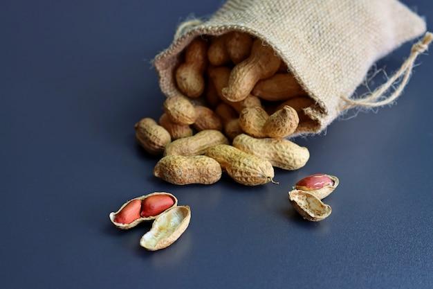 Erdnüsse in muscheln in einem leinensack auf einem grau.