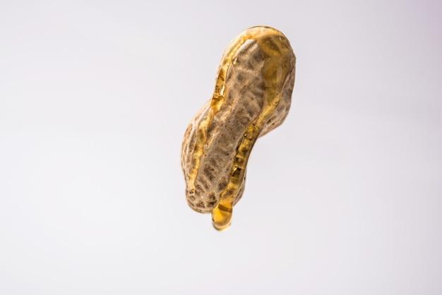 Erdnussöltropfen fallen von ganzen rohen erdnüssen oder moongfali, die in der luft hängen oder fliegen