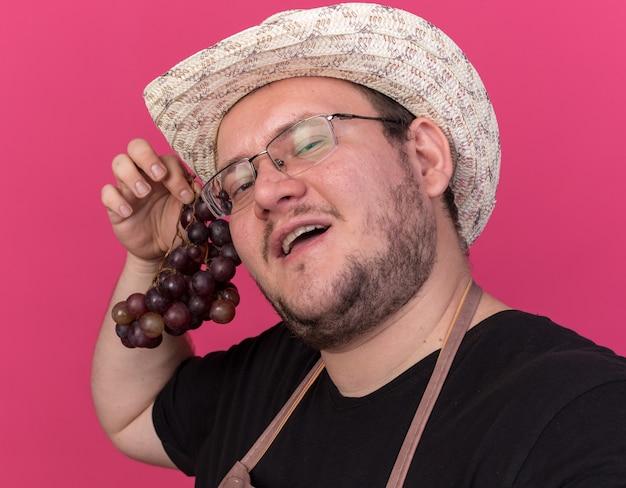 Erfreulicher junger männlicher gärtner, der gartenhut trägt, der trauben und front lokalisiert auf rosa wand hält