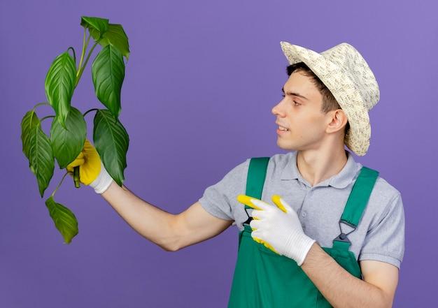 Erfreulicher junger männlicher gärtner, der gartenhut und handschuhe trägt, hält und zeigt auf pflanze