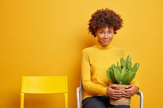 Erfreut dunkelhäutige junge frau mit lockigem haar hält topf kaktus posen auf bequemen stuhl in freizeitkleidung gekleidet